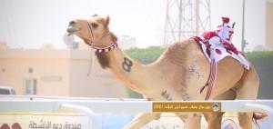 Heads of Arab Camel Racing Federations Praised Qatar for Organising Major Camel Races