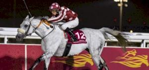 Tayf impresses as Thomas wins Qatar Gold Sword in spectacular fashion