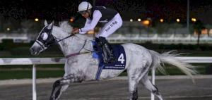 QREC To hold it's 47th race of the season with Al Wakra Cup